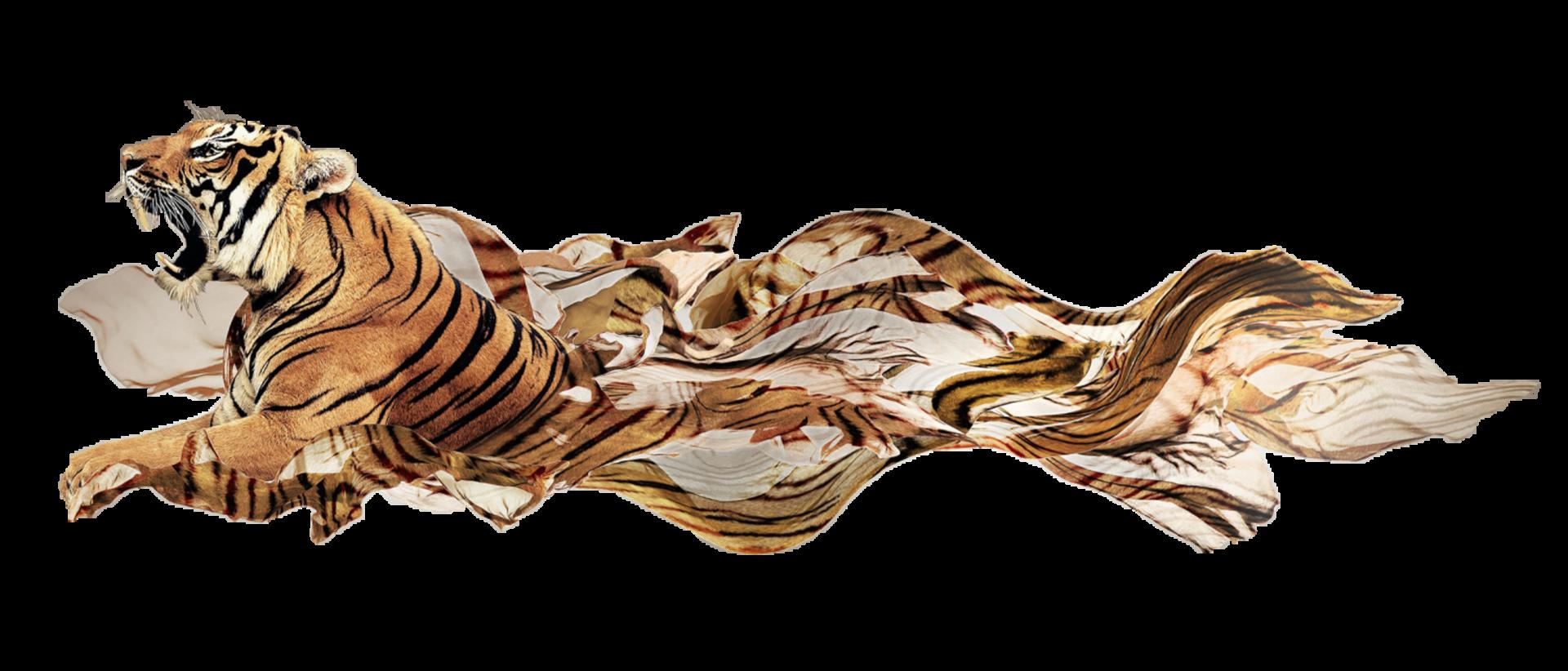 anvina-tiger